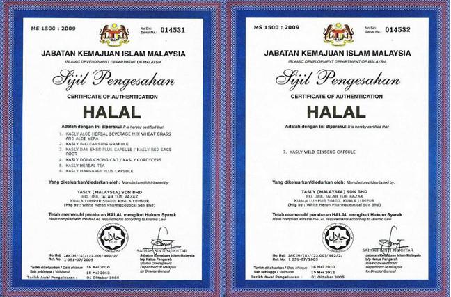 sijil3